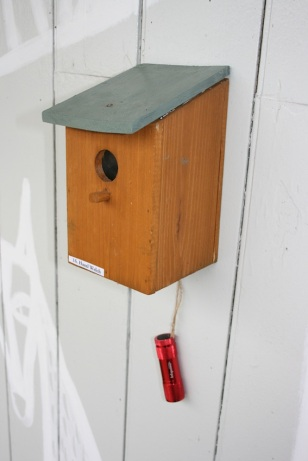 Art in a bird box / Art at Glynde Station